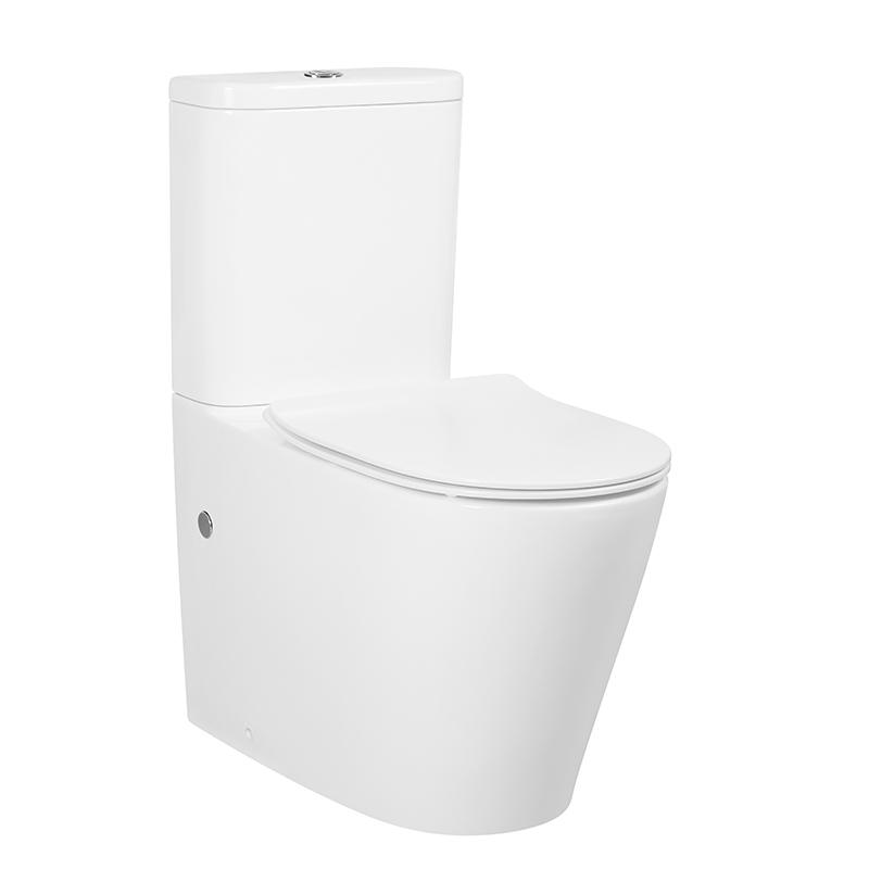 Rimless Back to Wall Toilet Suite